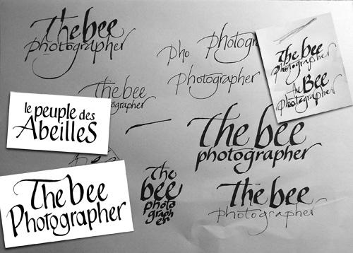 thebeephotographer